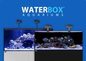 Waterbox Tanks