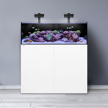 Waterbox Frag