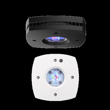AI Prime 16 HD
