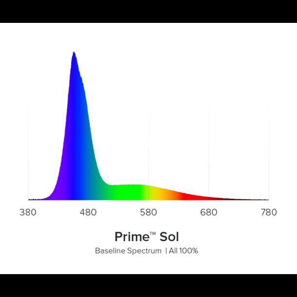 AI Prime Sol