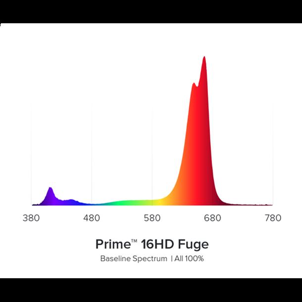 AI Prime Fuge
